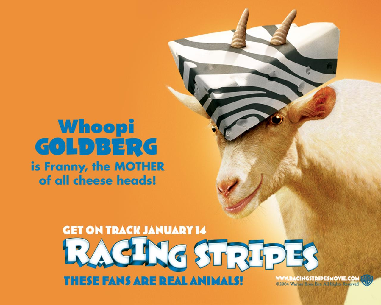 racing stripes 005